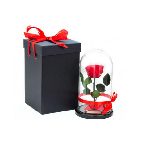 Как упаковать подарок и придать ему оригинальность.